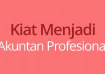 akuntan profesional