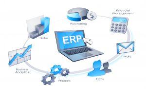 Peran Software ERP